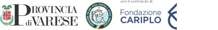 Progetto Acquanegra Logo